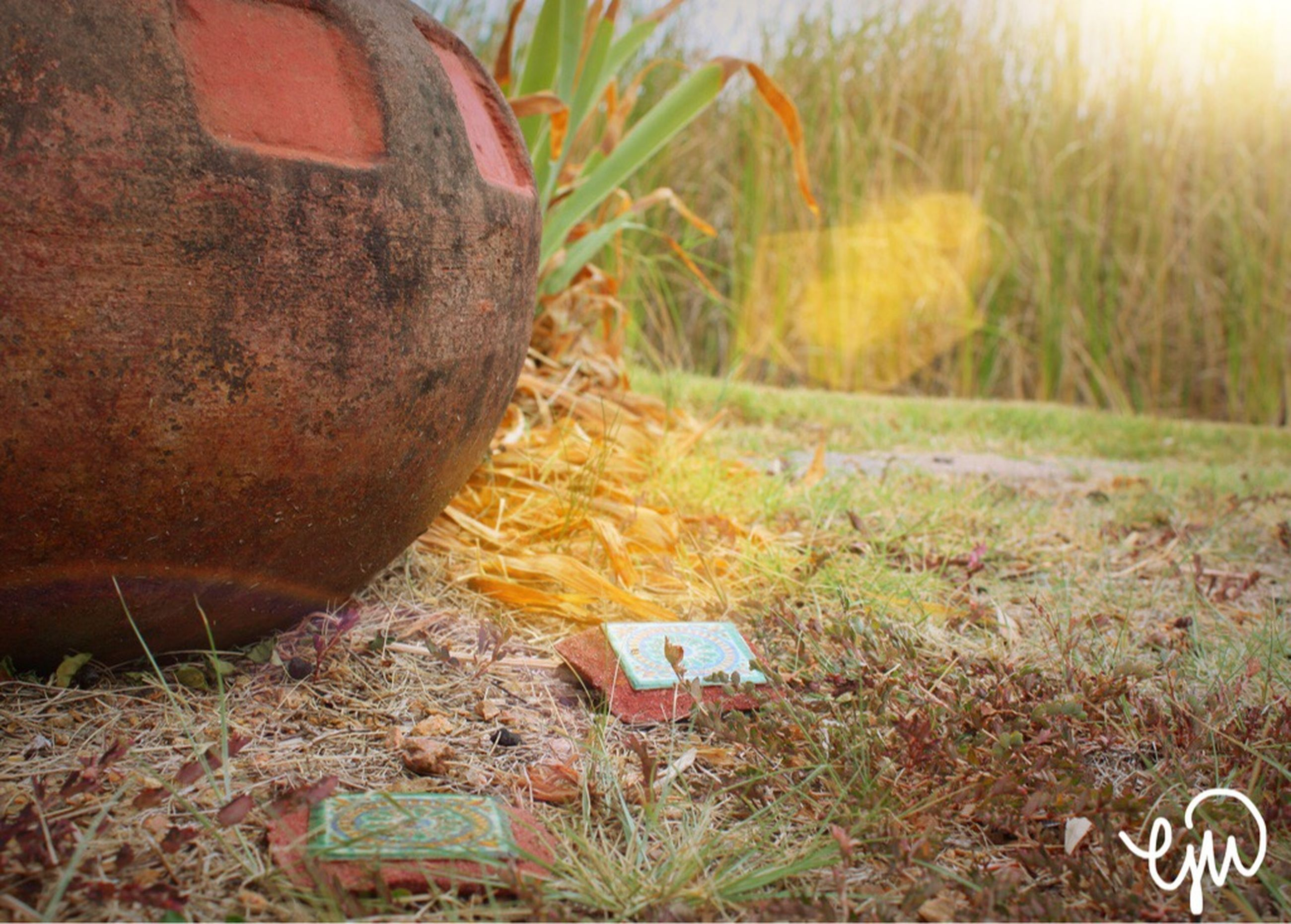 close-up, focus on foreground, brown, day, outdoors, weathered, no people, man made object