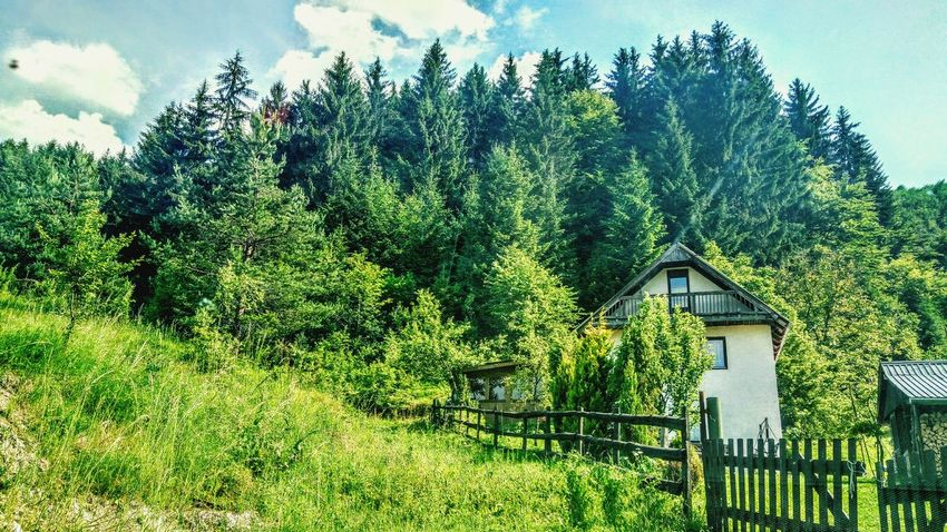 Village Village View Village Photography Day Beauty On The Way Lovephotography  Treskavica View Bosnia And Herzegovina No People Destination Viewpoint Photooftheday Beautiful Tree Mountain Ontheway Travel Photography Tree Nature Beauty In Nature Weekendhouse