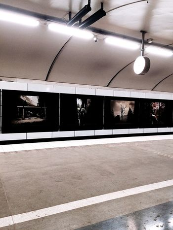 Subway Station Station Mariatorget Konst Art Railway Underground EyeEm Gallery Eyemphotography Konstitunnelbanan Subway Subwayart Tunnel View Tunnels Tunnelbanan