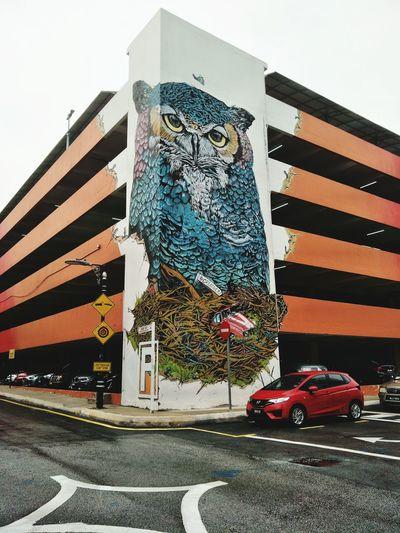 humangous owl