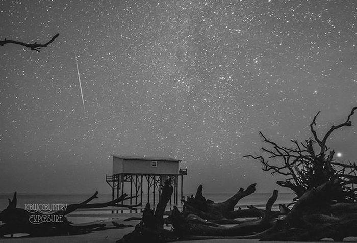 Huntingisland Discoversc Onlyinsouthcarolina Blackandwhite Longexposure Shootingstar Fallingstars Nightphotography