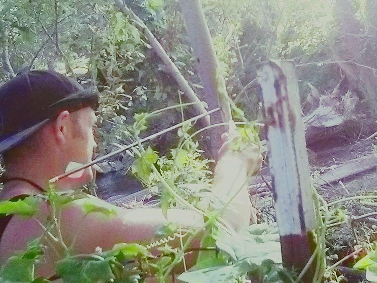 Pulli ndearrow