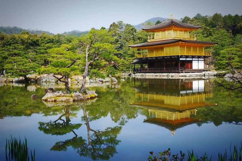 The golden pavillion, Kyoto. Topshot Kyoto Bestpicoftheday Lovejapan Travelphotography Beautiful Japan Spring Photooftheday Japanese  Travel Golden Golden Pavilion  True Reflection Amazing Outdoors Tourist