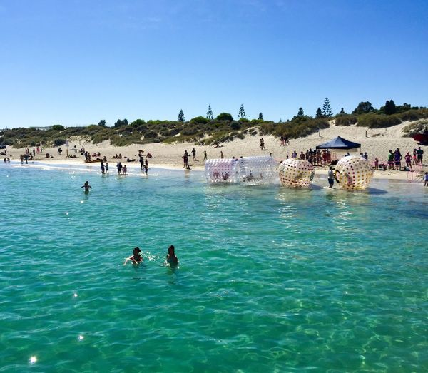 Water Balls Water Balls Coogee, WA April 3,2016 Entertainment Festival Event Indian Ocean Western Australia Coogee Beach Festival Recreational Pursuit Leisure Activity Sea Turquoise Water Swimming People Family Time Walking On Water Fun Balls Plastic Ball Beach Blue Wave