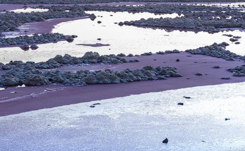Water No People Purple Rock - Object Tranquility Salt Lake