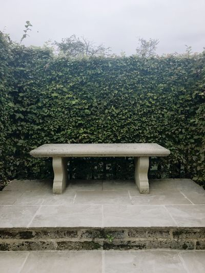 Bench Marble Marble Bench Tree Plant Growth Cloudy Skies Cloudy Day Outdoors Empty Day (null)Nature Formal Garden Tranquil Scene No People Burghley House