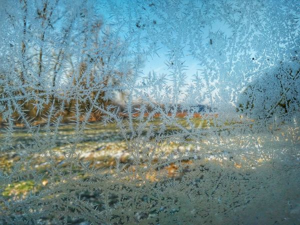 Ice cold Ice Cold Niedersachsen Germany Window Iced Window Gel Gelė