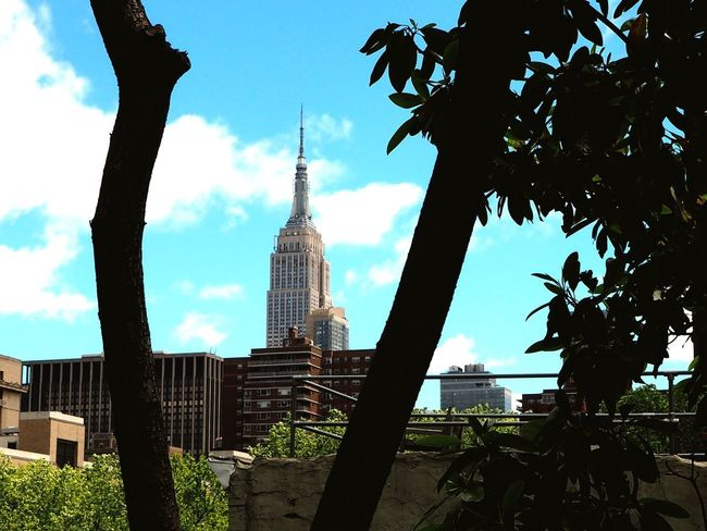 View from the High Line Park NYC NYC Photography