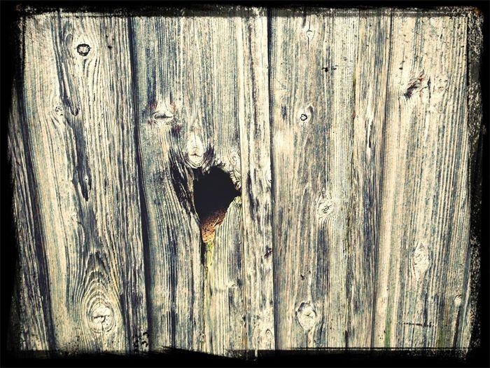 Holz Wand