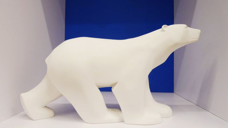 What's In The Box? Bear Art White Pure Sobriety  Taking Photos Say It Without Words Bear