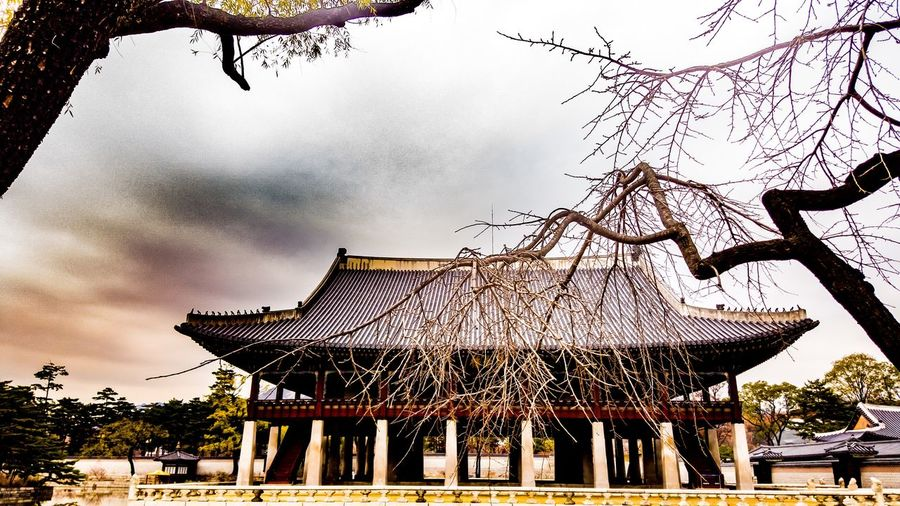 korean palace Seoul Korea in winter Korean King Korea Palace Kyeongbokgung Seoul, Korea Landscape Korean Meeting Hall Wintertime Sky Built Structure Cloud - Sky Architecture Low Angle View Outdoors Tree No People Building Exterior
