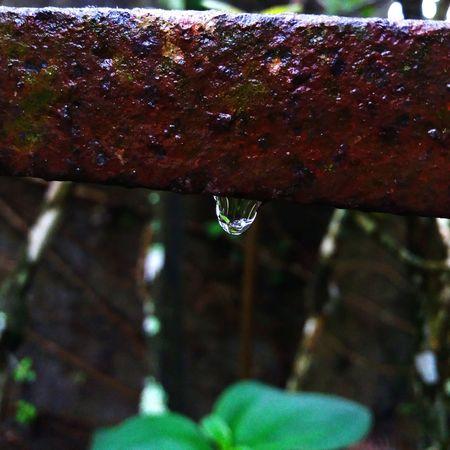 Waterdrop Drop Wet
