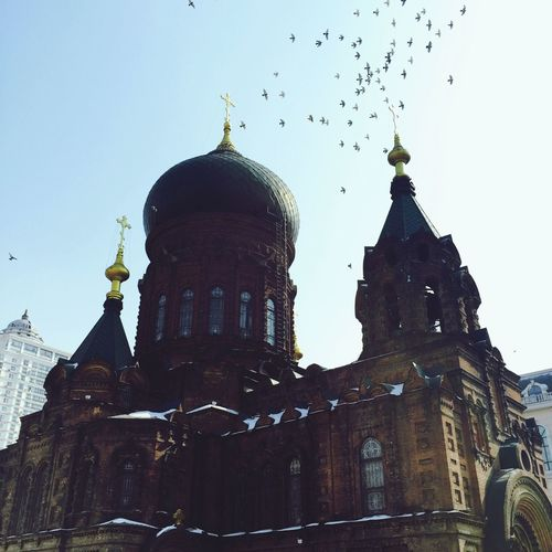 06-03-15 Church Carthedral Harbin China 哈尔滨 中国 VSCO Vscocam Architecture