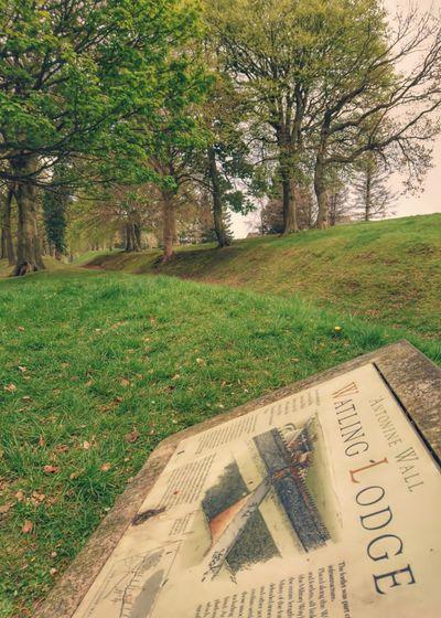 Antonine wall, Scotland. Scotland History Roman Empire Trees Nature History Educational Green Color