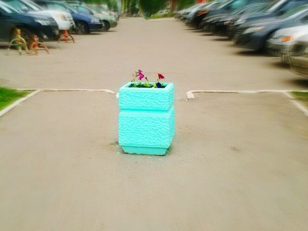 the yard in the city a landscape flowers parking brightly turquoise color
