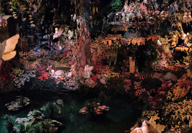 Attraction theme park the Efteling, Kaatsheuvel, the Netherlands. Water Nature No People Day Rock Architecture Solid Belief Religion Rock - Object Spirituality High Angle View Outdoors Plant Beauty In Nature Built Structure Flowering Plant Place Of Worship Building