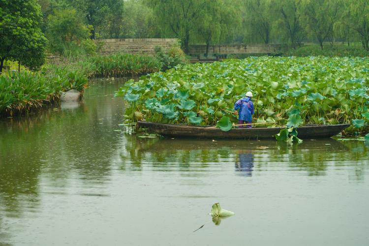Man floating on lake against trees