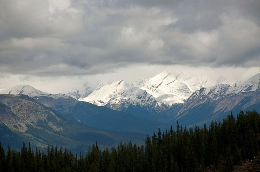 Banff National Park  Canadian Rockies  Cool And Refreshing Heavy Clouds At Top Of Mountain Snow Capped Mountains Adventure Landscape Misty Mountains  Mountain Mountain Range Mysterious Outdoors Pinnacle Success