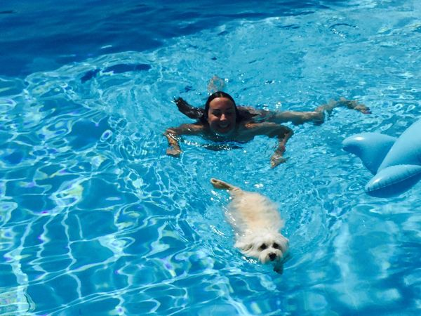 Peace ✌ Relaxing Time Holidays ☀ IPhoneography Hello Sunshine Pool Time Myprincess🐶🐶 Ilovemydog Isis😍 Freedom