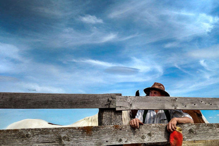 Man Looking through Fence with Horses in Background Adult Cloud - Sky Country Country Life Countryside Cowboy Day Farm Fence Horse Horses Leisure Activity Lifestyles Man Nature One Person Outdoors People Real People Sky Standing