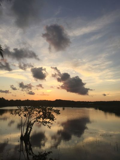 Beauty In Nature Cloud - Sky Day Idyllic Lake Nature No People Outdoors Reflection Scenics Silhouette Sky Sunset Tranquil Scene Tranquility Tree Water