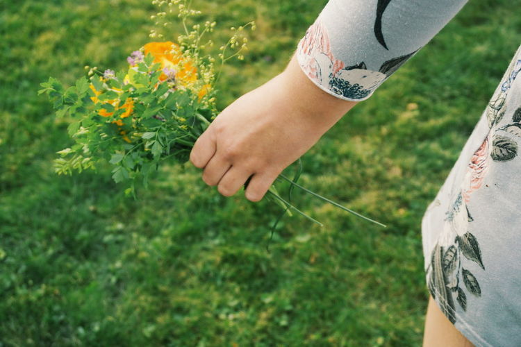 hand holding a bouquet of garden flowers Bouquet Bouquet Of Flowers Picking Flowers  Young Women Human Body Part Human Hand Garden Country Life Countryside Rural Scene Summer Summertime Floral Pattern Dress Human Hand Low Section Close-up Grass Petal Flower Head Growing In Bloom