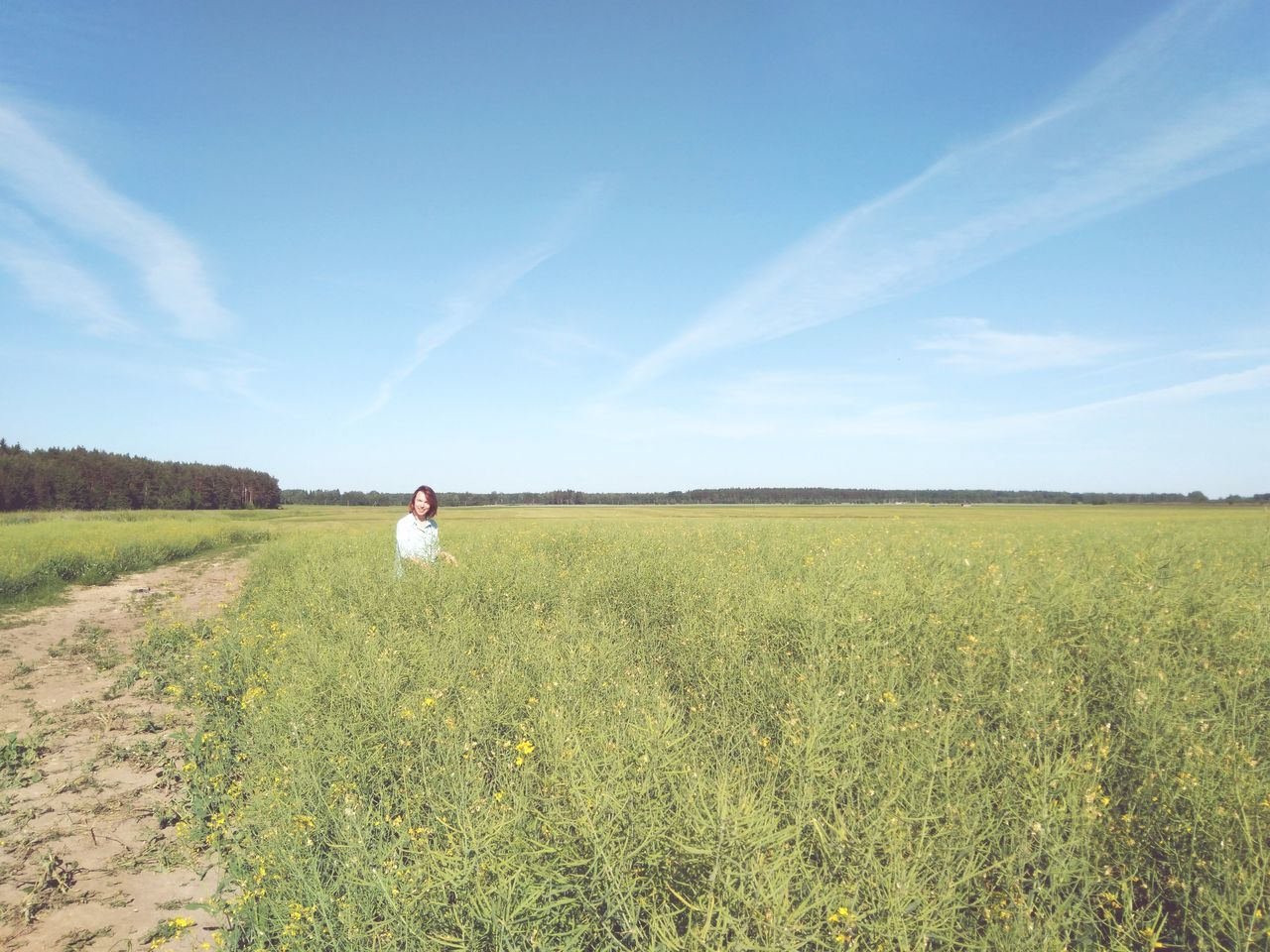 field, land, sky, one person, plant, beauty in nature, landscape, environment, scenics - nature, tranquility, day, tranquil scene, nature, cloud - sky, growth, women, real people, grass, adult, non-urban scene, outdoors