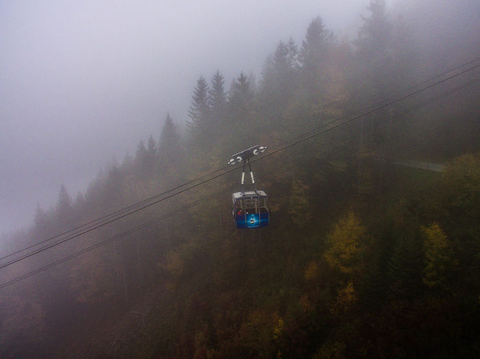 Overhead cable car in forest against sky during foggy weather