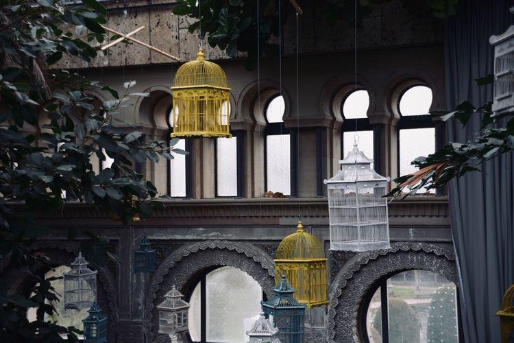 Birdcages Built