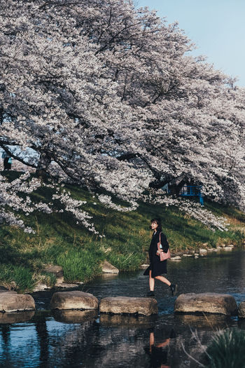 Playful One Person Plant Water Tree Lifestyles Beauty In Nature Nature Real People Leisure Activity Day Adult Women Young Adult Full Length Growth Casual Clothing Standing Sitting Outdoors Cherry Tree Sakura Sakura Blossom Sakura Trees