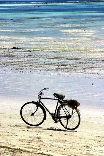 Bike Week
