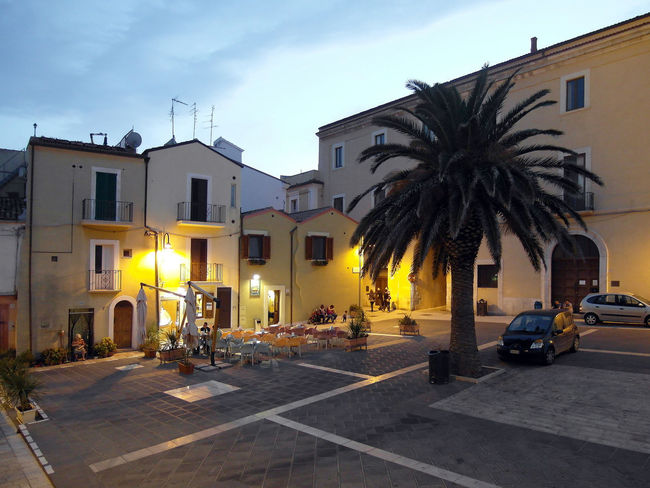Square of the historical center of Termoli with palm Historic Center Historic Centre Historical Building Light Palm Tree Square Termoli  Architecture Bar Building Exterior Buildings Built Structure Car City Clouds And Sky Italy Molise Outdoors Palm Tree Residential Building Sunset Termoli City Travel Destination Tree Urban Landscape