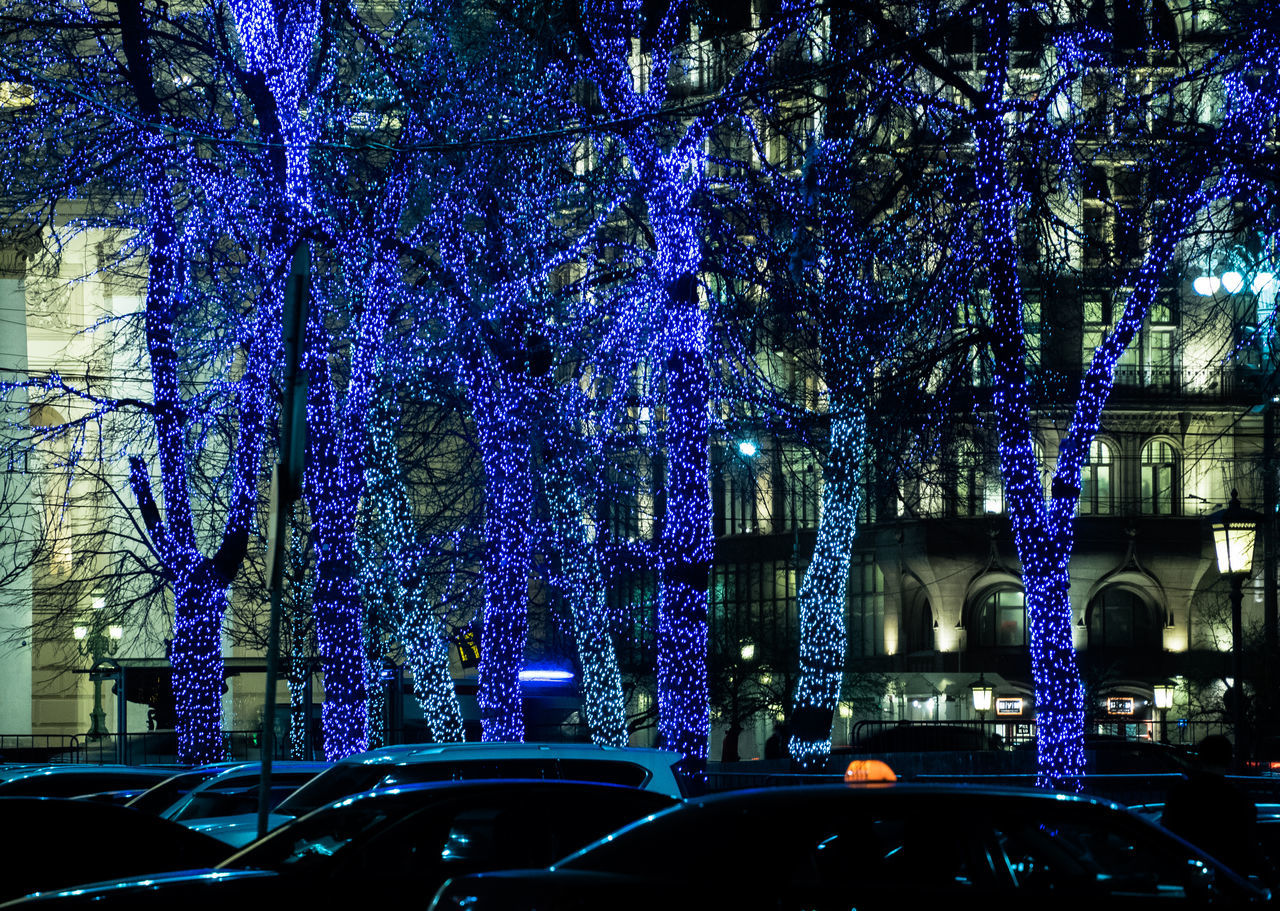 car, tree, land vehicle, transportation, illuminated, night, mode of transport, built structure, architecture, blue, branch, no people, building exterior, outdoors