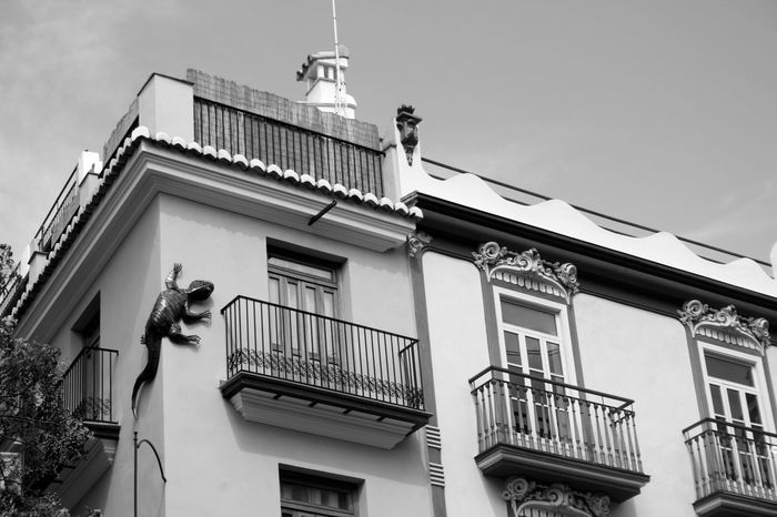 It looks real, just a very big one. Architecture Exterior Decoration Façade Lizard Low Angle View On The Wall Original Decoration Reptile Sculpture Valencia, Spain Monochrome Photography