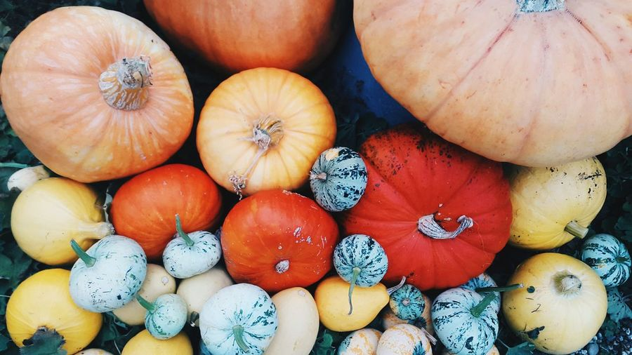Full Frame Shot Of Colorful Pumpkins For Sale At Market Stall
