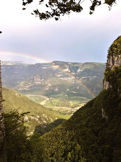 Tree Nature Scenics No People Outdoors Sky Mountains Mountain View Tree Tranquility Arcobaleno  Rainbow After Raining Sun Sun After The Rain