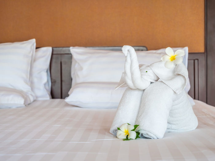 Bird Made Of Towels On Bed In Hotel Room