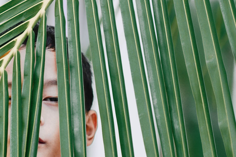 Close-Up Portrait Of Boy Peeking Through Leaves