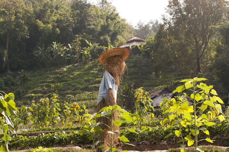 Woman standing by plants on land