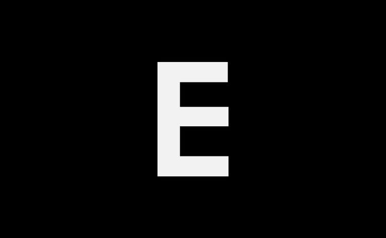Light trails on illuminated city buildings at night
