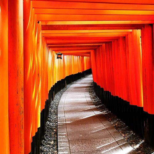 Empty narrow pathway in torii gate