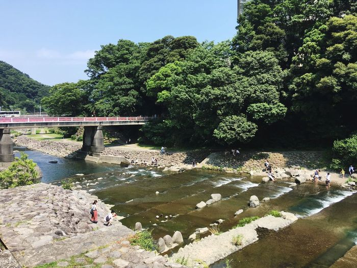 Hakone Japan Summer River Riverside Water Real People Large Group Of People Tree Day Bridge - Man Made Structure Nature Outdoors Beauty In Nature
