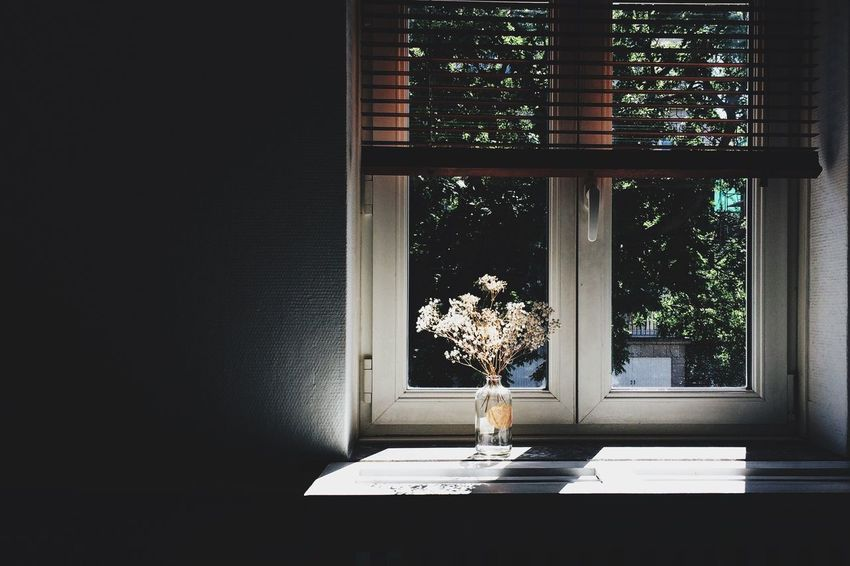 Window Indoors  Potted Plant Flower Pot Flower Vase Growth Window Sill Plant Window Frame Day Bunch Of Flowers No People Darkroom