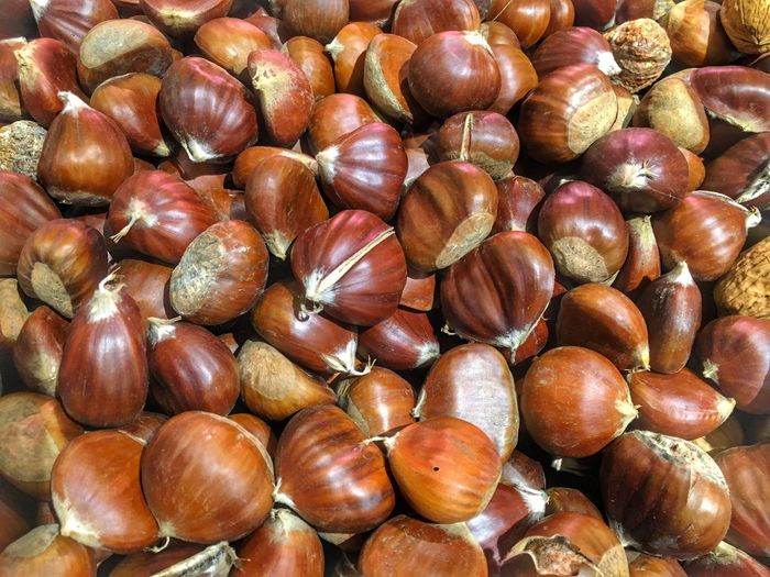 Food And Drink Nut - Food Food Full Frame Healthy Eating Abundance Walnut Hazelnut No People Backgrounds Chestnut - Food Close-up Freshness Indoors  Day Chestnuts Chestnuts For Roasting
