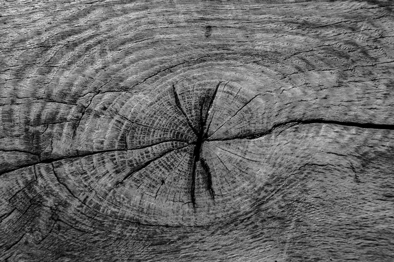 wood Minimalism