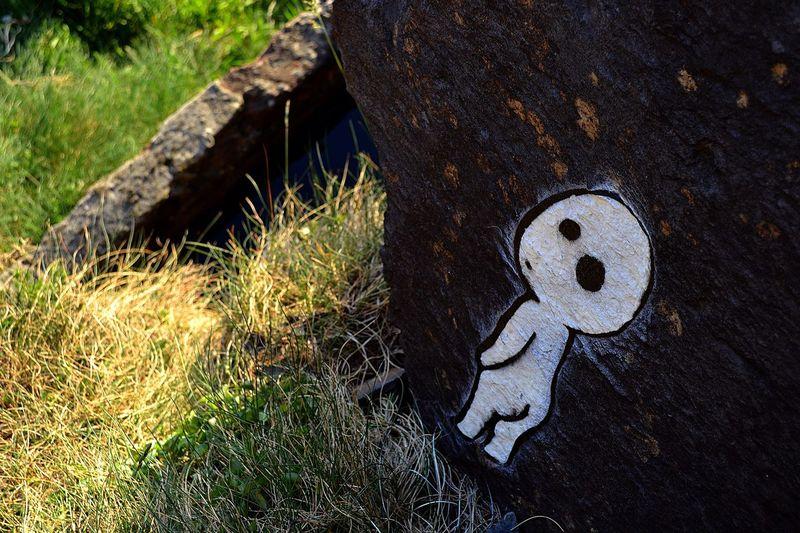 Street Art Stencil Nature