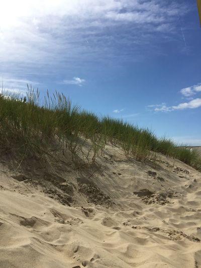 Dike Breskens Nederland Sand Dune
