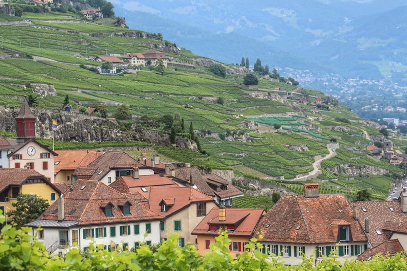 Lausanne Building Exterior Architecture Mountain House Landscape Built Structure No People High Angle View Scenics Outdoors Agriculture Rural Scene Green Color Day Nature Roof Travel Destinations Beauty In Nature Sky Terraced Field