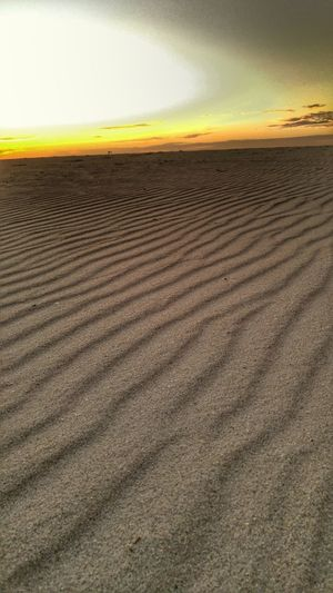 Landscape Nature Beauty In Nature Horizon Over Land Tranquility Sand Sky Arid Climate Sandy Sand Patterns Pattern Textured  Lines Sunsrise Beach Desert Beauty In Nature Glow Glowing Lonely Untouched