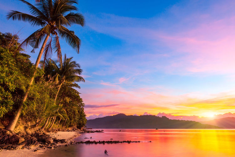 Natural Beaches along the Port Barton Bay, Palawan Palawan Port Barton Philipiines Beach Sunset Sky Water Tropical Climate Tree Palm Tree Beauty In Nature Tranquility Scenics - Nature Tranquil Scene Plant Nature Sea Cloud - Sky No People Idyllic Reflection Coconut Palm Tree Outdoors Tropical Tree Vacations